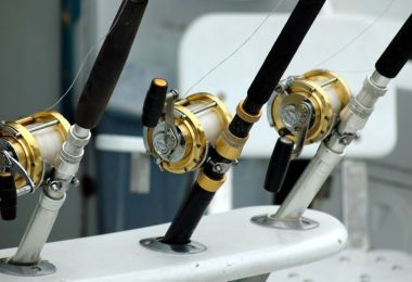 Best Fishing Reels for The Money