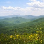 8 More Amazing Outdoor Companies in the Blue Ridge Region