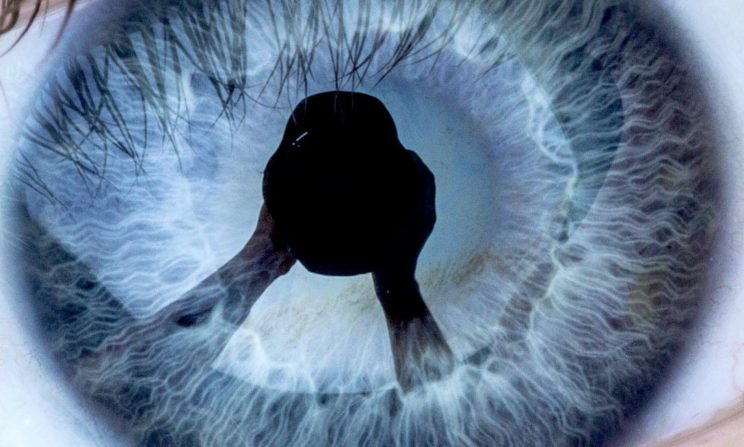 Auge Dirk Gebhardt