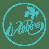 AIRRINS — органицация праздников