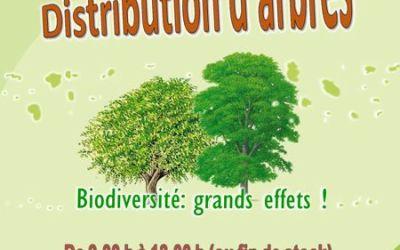 Distribution de plants d'arbres