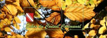 Conseil communal de Gedinne, du 12 octobre 2017
