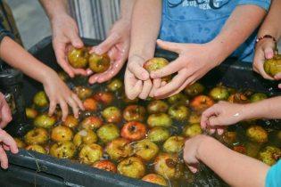Activité « jus de pommes » du 29 octobre