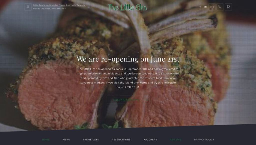 Web-Design-and-SEO-SEM-Lanzarote-by-geek-owl-LITTLEELM-portfolio-preview-image
