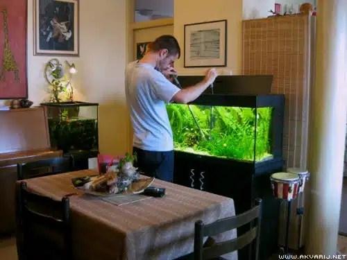 tjedno rezanje biljaka