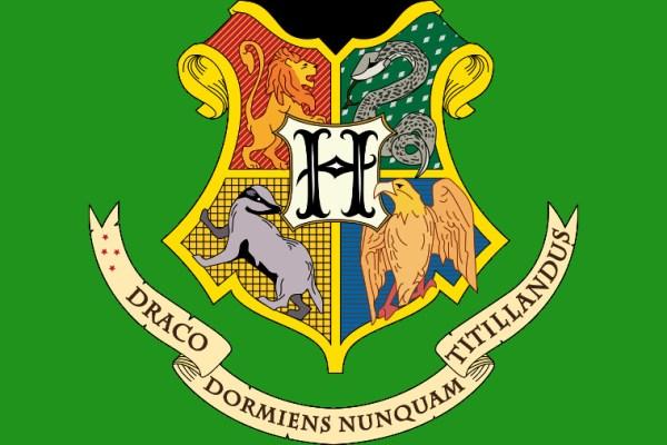 E se i personaggi Disney andassero a Hogwarts?