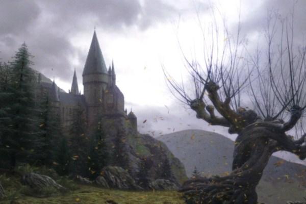 Non siete andati ad Hogwarts? Apre in Francia una scuola di Magia e Stregoneria