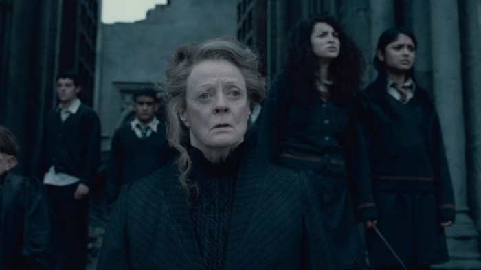 An able leader in Dumbledore's absence