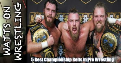 5 Best Championship Belts in Pro Wrestling (According to Watts)