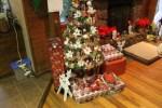 christmas 011
