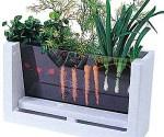viewable-root-garden