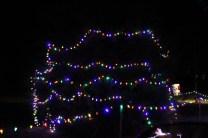 Christmas At Bubba's '17 (14)