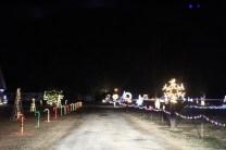 Christmas At Bubba's '17 (3)