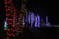Christmas At The Falls '17 (47)