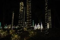 Christmas At The Falls '17 (72)