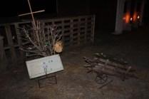 Greenbrier Road Nativity (5)