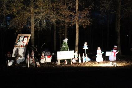 Pell City Lakeside Park Christmas '17 (12)