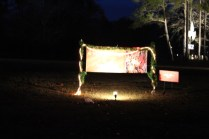 Pell City Lakeside Park Christmas '17 (39)