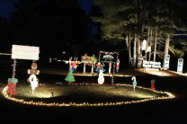 Pell City Lakeside Park Christmas '17 (41)