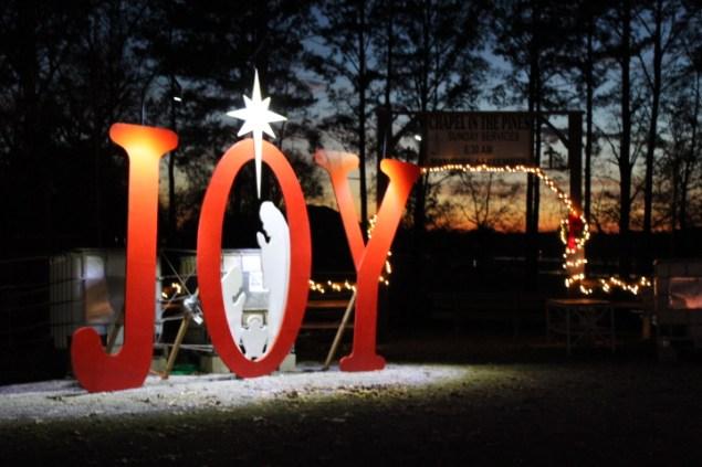 Pell City Lakeside Park Christmas '17 (48)