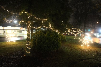 Quintard Median Christmas Lights 2018 (12)