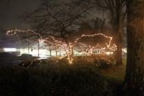 Quintard Median Christmas Lights 2018 (2)