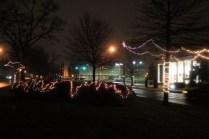 Quintard Median Christmas Lights 2018 (27)