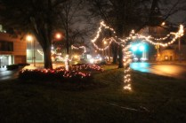 Quintard Median Christmas Lights 2018 (37)