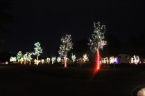River Country Campground Christmas '18 (28)
