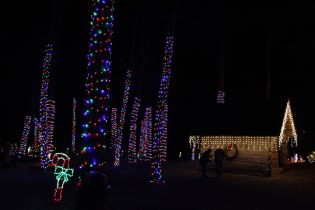 christmas at the falls 2018 (66)