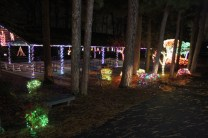 christmas in the park arab 2018 (3)