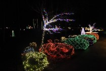 christmas in the park arab 2018 (49)