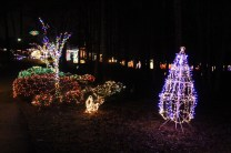 christmas in the park arab 2018 (51)