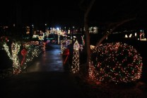christmas in the park arab 2018 (80)