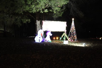 Pell City Christmas In The Park 2019 (12)