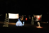 Pell City Christmas In The Park 2019 (14)