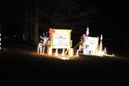 Pell City Christmas In The Park 2019 (20)