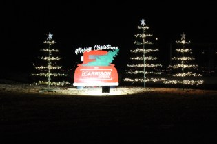 Pell City Christmas In The Park 2019 (22)