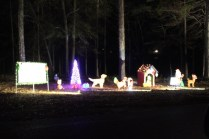 Pell City Christmas In The Park 2019 (26)