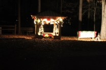 Pell City Christmas In The Park 2019 (29)