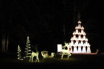 Pell City Christmas In The Park 2019 (39)