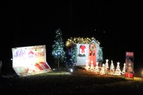 Pell City Christmas In The Park 2019 (40)