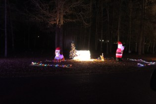 Pell City Christmas In The Park 2019 (44)