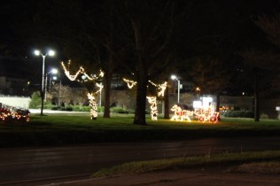 Quintard Avenue Christmas Lights 2019 (32)