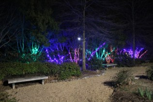 Zoolight Safari 2019 (10)