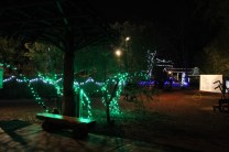 Zoolight Safari 2019 (51)