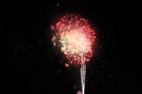 Freedom Festival Fireworks 16 (21)