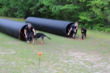 US Canine Biathlon (42)