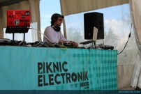 piknic_electronicl_25