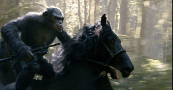 ape_horse